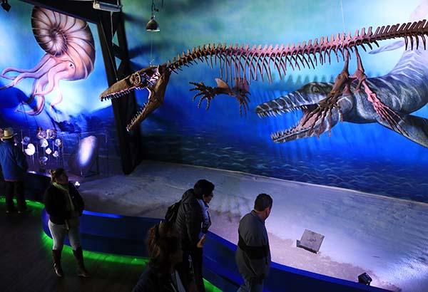 Museo de la Evolución Tehuacán : Museos México : Sistema
